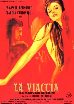 VIACCIA2